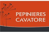 Pépinières Cavatore