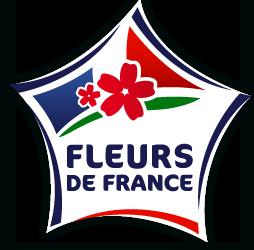 Logo fleur de France